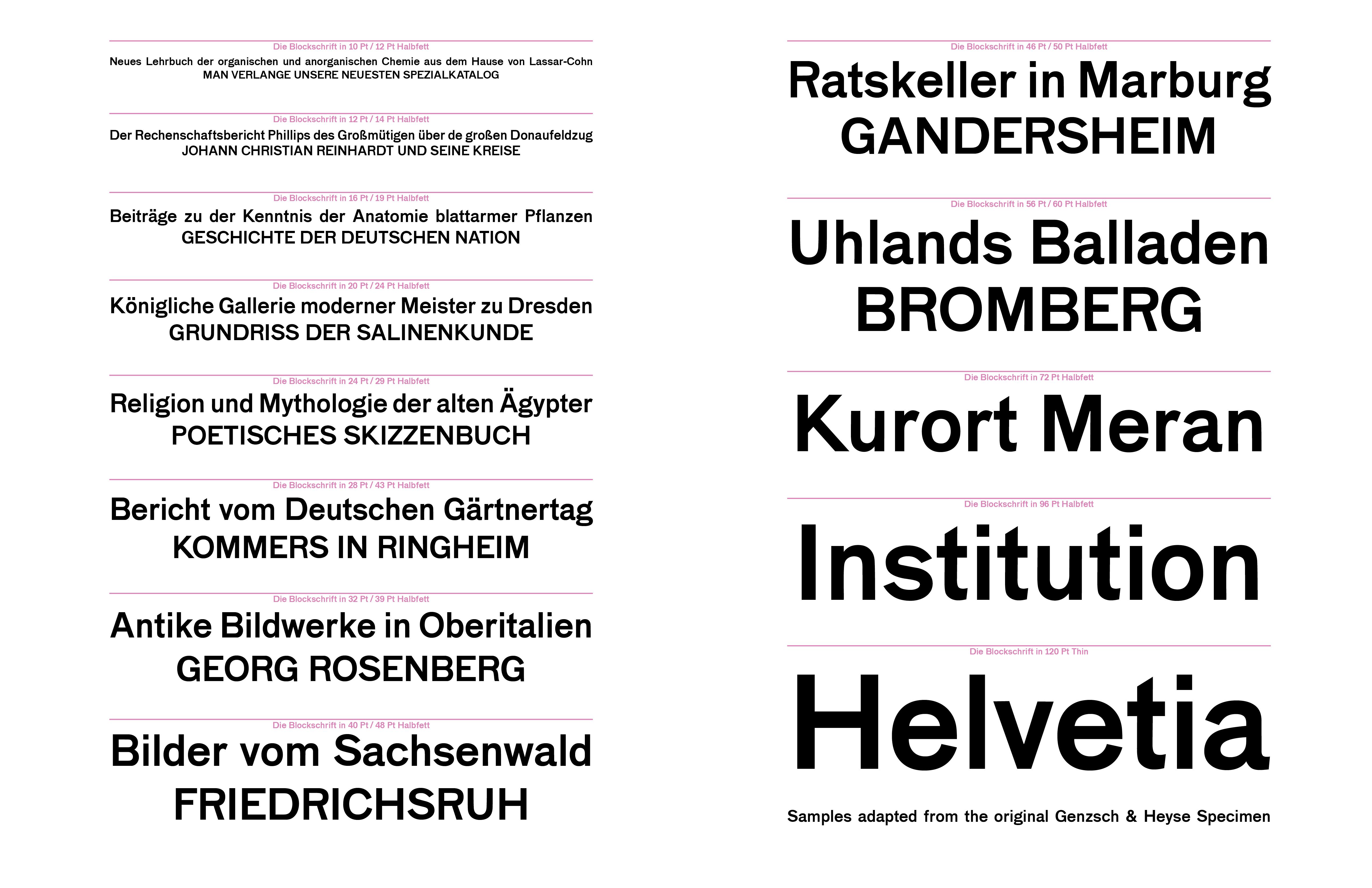Groß Anatomie Einer Geschichte Galerie - Anatomie Ideen - finotti.info